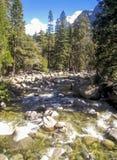 Merced flod i den Yosemite nationalparken Arkivfoto