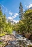 Merced flod i den Yosemite nationalparken Arkivbilder