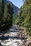 Merced flod i den Yosemite nationalparken, Kalifornien, USA Fotografering för Bildbyråer