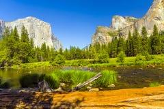 Merced flod på den Yosemite nationalparken Royaltyfri Fotografi