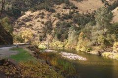 Merced flod på varm höstdag Royaltyfria Foton