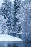 Merced flod som filt med snö Royaltyfri Foto