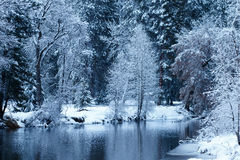 Merced flod som filt med snö Arkivbild
