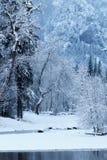 Merced flod som filt med snö Arkivfoton