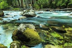 Merced flod Yosemite Kalifornien Royaltyfri Foto
