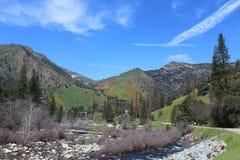Merced flodklyfta i Kalifornien royaltyfri bild