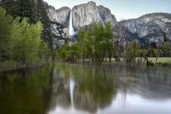 Merced Fluss und Yosemite Falls Stockbilder