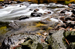 Merced River. A small piece of the Merced River, Yosemite Stock Photos