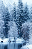 Merced river blanketed with snow Stock Photos
