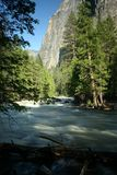 Merced River and Cliff. Merced river at full capacity during early summer in Yosemite National Park, California, U.S.A Royalty Free Stock Images