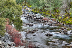 Merced River HDR Stock Image