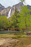 Merced River Sandbar and Yosemite Falls Royalty Free Stock Photo