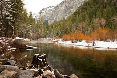 Merced River Scene Royalty Free Stock Photos