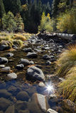 Merced River, Yosemite Royalty Free Stock Images