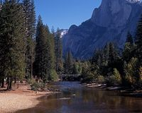Merced River, Yosemite National Park. royalty free stock photos