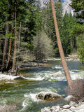 Merced River in Yosemite Park Stock Photos