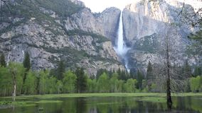 Merced River and Yosemite Valley stock video footage