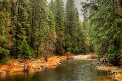 Merced River Yosemite Valley Royalty Free Stock Image