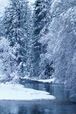 Merced rzeka blanketed z śniegiem Zdjęcie Royalty Free
