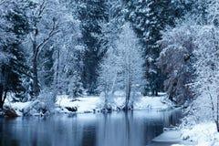 Merced rzeka blanketed z śniegiem Fotografia Stock