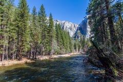 Merced rzeka Capitan w Yosemite parku narodowym i El Zdjęcie Stock