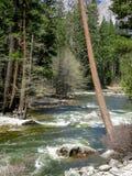 Merced rzeka w Yosemite parku Zdjęcia Stock