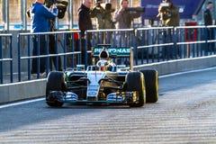Mercedes AMG Petronas F1, Lewis Hamilton, 2015 lizenzfreies stockbild