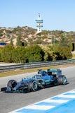 Mercedes AMG Petronas F1, Nico Rosberg, 2015 Royaltyfri Foto