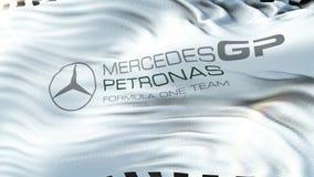 Mercedes Petronas F1 flagga som vinkar på solen Sömlös ögla med högt detaljerad tygtextur Ögla som är klar i upplösning 4k stock video