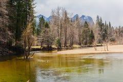 Mercedez rzeka przy Yosemite Obraz Stock