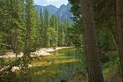 Mercedrivier Yosemite stock foto's