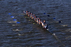 Mercer Crew races in the Head of Charles Regatta Men`s Youth Eight Stock Photography