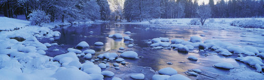 Mercerflod Royaltyfria Bilder