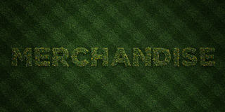 MERCHANDISE - fresh Grass letters with flowers and dandelions - 3D rendered royalty free stock image. Can be used for online banner ads and direct mailers Stock Photography