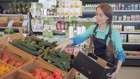 Merchandiser puts greenhouse cucumbers supermarket in boxes vegetable department. Woman with two pigtails. Merchandiser puts greenhouse cucumbers supermarket in stock footage