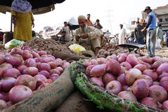 Merchant selling fresh red onion and potato in Pakistan Royalty Free Stock Photography