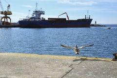 Merchant ship unloading at the dock. In Santa Pola Royalty Free Stock Images