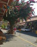 Merchant street in Puerto Vallarta royalty free stock image