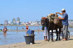 Merchants on the beach of Durres. DURRES, ALBANIA – August 30, 2015: Man with donkey sales figs on the beach. Albania has two faces - backwardness and poverty Stock Images