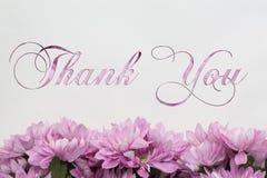 Merci - des fleurs d'isolement sur le blanc Image libre de droits