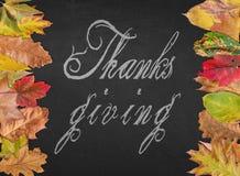 Merci donnant le jour citent comme la bannière de carte postale avec des feuilles d'automne images libres de droits