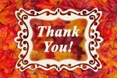 Merci message avec des feuilles de chute image stock