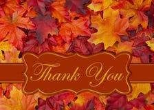 Merci message avec des feuilles de chute photographie stock libre de droits