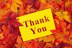 Merci message avec des feuilles de chute photo stock