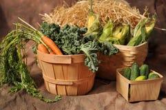 Merci nel carrello delle verdure di caduta Immagini Stock Libere da Diritti
