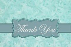 Merci que le message sur la sarcelle d'hiver pâle a monté tissu de peluche image libre de droits