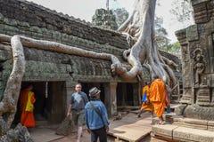 Merci temple de Prohm au complexe d'Angkor Vat, Siem Reap, Cambodge Photo stock