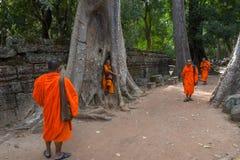 Merci temple de Prohm au complexe d'Angkor Vat, Siem Reap, Cambodge Photographie stock