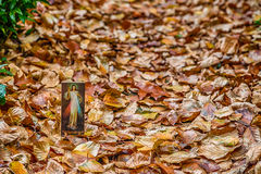 Merciful Jesus icon among fallen Autumn leaves Royalty Free Stock Image