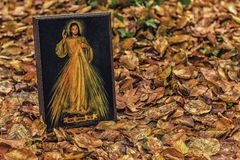 Merciful Jesus icon with Spanish sentence. An icon with the picture of the Merciful Jesus among fallen leaves in Autumn: the translation of the Spanish sentence Royalty Free Stock Images